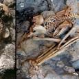Жертвы извержения Везувия погибали от взрыва черепа