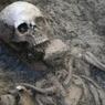 Скелет был спрятан под асфальтом у входа в Московский зоопарк