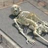 В столичном метро обнаружен скелет