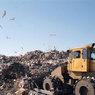 На Истринском полигоне бытовых отходов найдено тело младенца