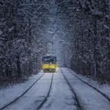 Сразу две женщины за утро попали под трамвай в разных районах Ульяновска