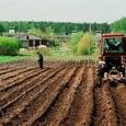 Что охраняешь, то и имеешь: крупнейшим землевладельцем стал бывший министр сельского хозяйства