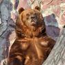 Рабочие-вахтовики на грузовиках несколько раз специально переехали медведя в Якутии