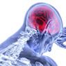 В человеческом организме обнаружен второй «мозг»