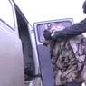 ФСБ разоблачила террористическую ячейку в Татарстане