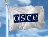 ОБСЕ подтвердила завершение разведения сил в Петровском