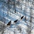 Что изменится в жизни россиян от 0 декабря