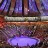 Шестилетняя дочь Аскольда Запашного дебютирует в цирке