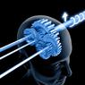 Ученые США нашли эффективный способ улучшения памяти