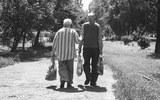 Названы  факторы, которые ведут к долголетию