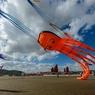 Осьминог-Кракен - пожиратель кораблей - найден в пучине  (ФОТО)