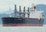 Турецкий грузовой корабль с российской пшеницей на борту подвергся ракетной атаке
