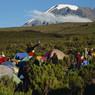 Нашествие туристов угрожает Килиманджаро