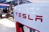 Tesla назначила нового председателя совета директоров вместо Илона Маска