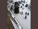 Стало известно о количестве погибших в ДТП с автобусом в Забайкалье