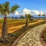 Россия и Кипр утвердили договорённость об изменении налогового соглашения