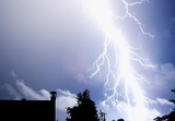 Молния ударила в гуляющих в парке москвичей