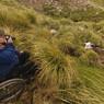 На Алтае развивают туризм для инвалидов