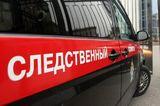 Источники: Незадолго до гибели следователь Е. Шишкина подавала рапорт об угрозах
