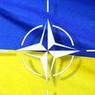 Главком НАТО заявил, что о международной военной операции в Донбассе речи не было