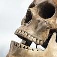 В Португалии найден  череп близкого человеку существа