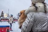 Рабочим вздумалось демонтировать новогоднюю арку, когда на катке было полно детей