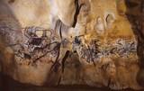 Французская пещера Шове вошла в список Всемирного наследия ЮНЕСКО