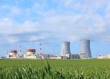 Недавно запущенная БелАЭС прекратила выработку энергии
