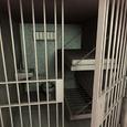 Наехавшему на джипе на ребенка в Ленобласти Бельскому грозит арест