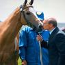 Владимир Путин дал лошадям Пржевальского волю