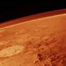 Ученые Голландии: На Марсе можно выращивать редис и помидоры