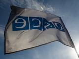 ОБСЕ призвала Белоруссию провести новые выборы