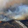 Лесные пожары в Калифорнии перекинулись на автомагистраль: в пробке сгорели 20 машин