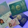 Киргизам наказали получить новые паспорта для проживания в РФ