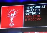 Вице-губернатор Санкт-Петербурга пообещал достойно провести ЧМ-2018