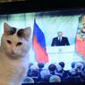 Британцы - Путину: это Россия-то в роли морального компаса мира?