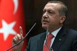"Эрдоган назвал дату запуска ""Турецкого потока"""