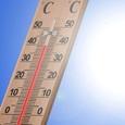 Синоптики пообещали потепление до +25 на следующей неделе
