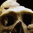 В ДНК современных людей обнаружены гены неизвестных гоминидов