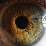 Ученые: Просмотр видео при низкой скорости интернет-соединения вреден для организма