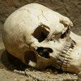 В Испании найдена стоянка древних каннибалов