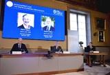 Нобелевскую премию по экономики дали за аукционы