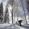 Норвежские лыжницы взяли золото в командном спринте на ОИ, Россия - 6-я