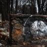 Художник создал серию граффити на руинах сгоревшего города Парадайс