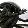 Топ самых загадочных встреч с инопланетянами по версии Пентагона