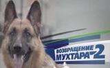 "Звезда сериала ""Возвращение Мухтара-2"" впала в кому"