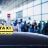 В системе обработки багажа в аэропорту Шереметьево случился сбой