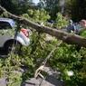 """Ураганный ветер до 25 м/сек оставил волгоградцев без света и """"похоронил"""" их машины"""