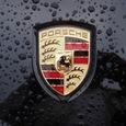 Компания Porsche назвала виновника гибели актера Пола Уокера