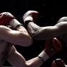 Бой между Владимиром Кличко и Тайсоном Фьюри пройдет в сентябре